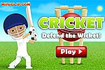 Cricket Defend The Wicket - Batting Flash Game