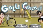 Gali Cricket