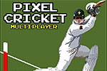 Pixel Cricket