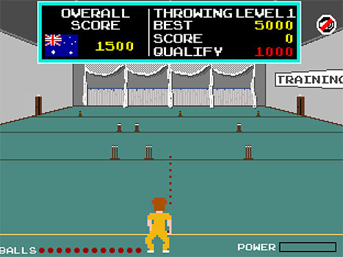 Pixel Cricket screenshot