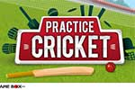 Practice Cricket - Easy Batsman Game